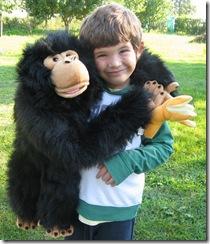 thomas_gorilla